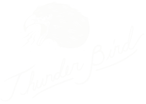 thunderbird bar, portland oregon
